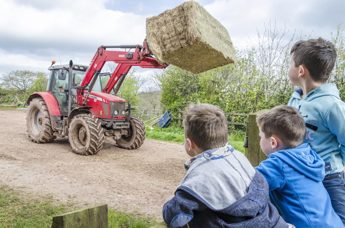 tcct-occombefarm-tractor-boys