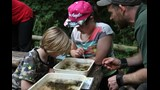 pond dipping (1)